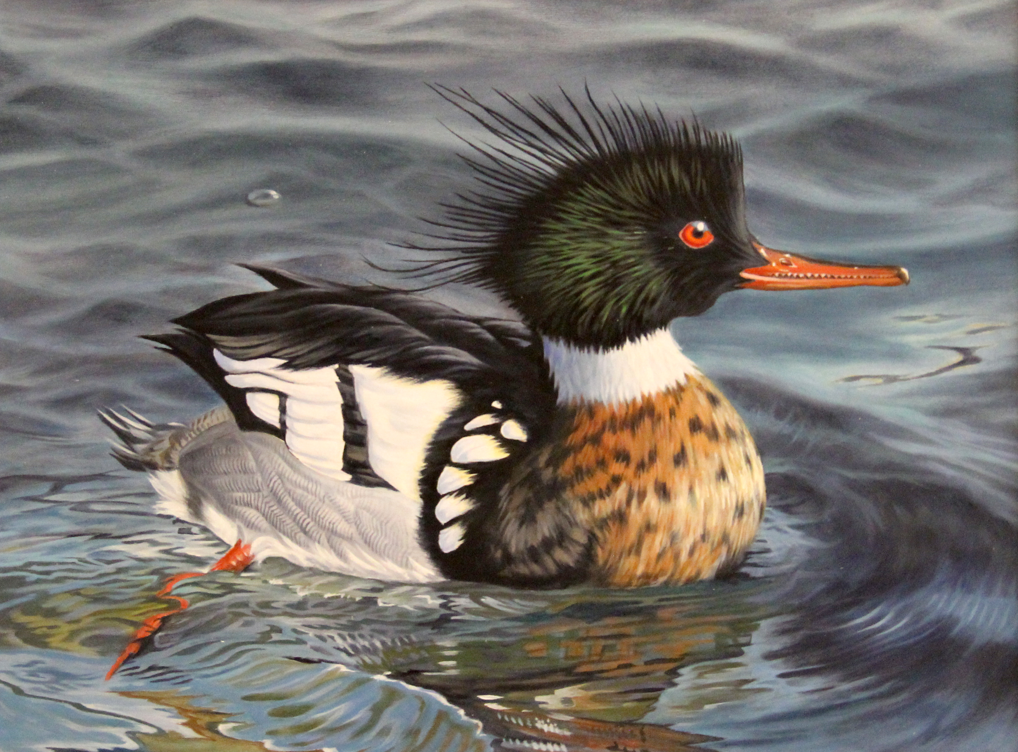 First-time Contestant Wins Waterfowl Stamp Art Competition