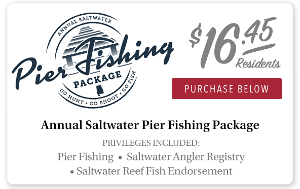Alabama Saltwater Pier Fishing Package