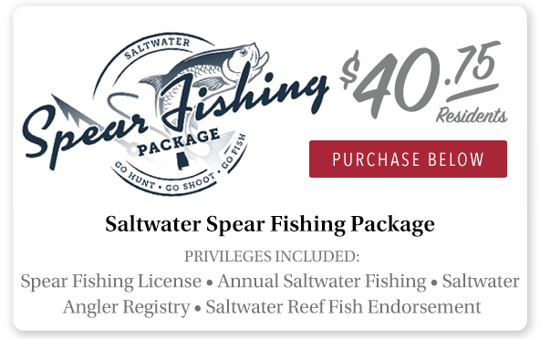 Alabama Saltwater Spear Fishing Package