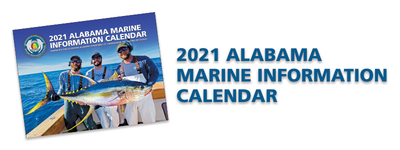 2021 Marine Calendar Download