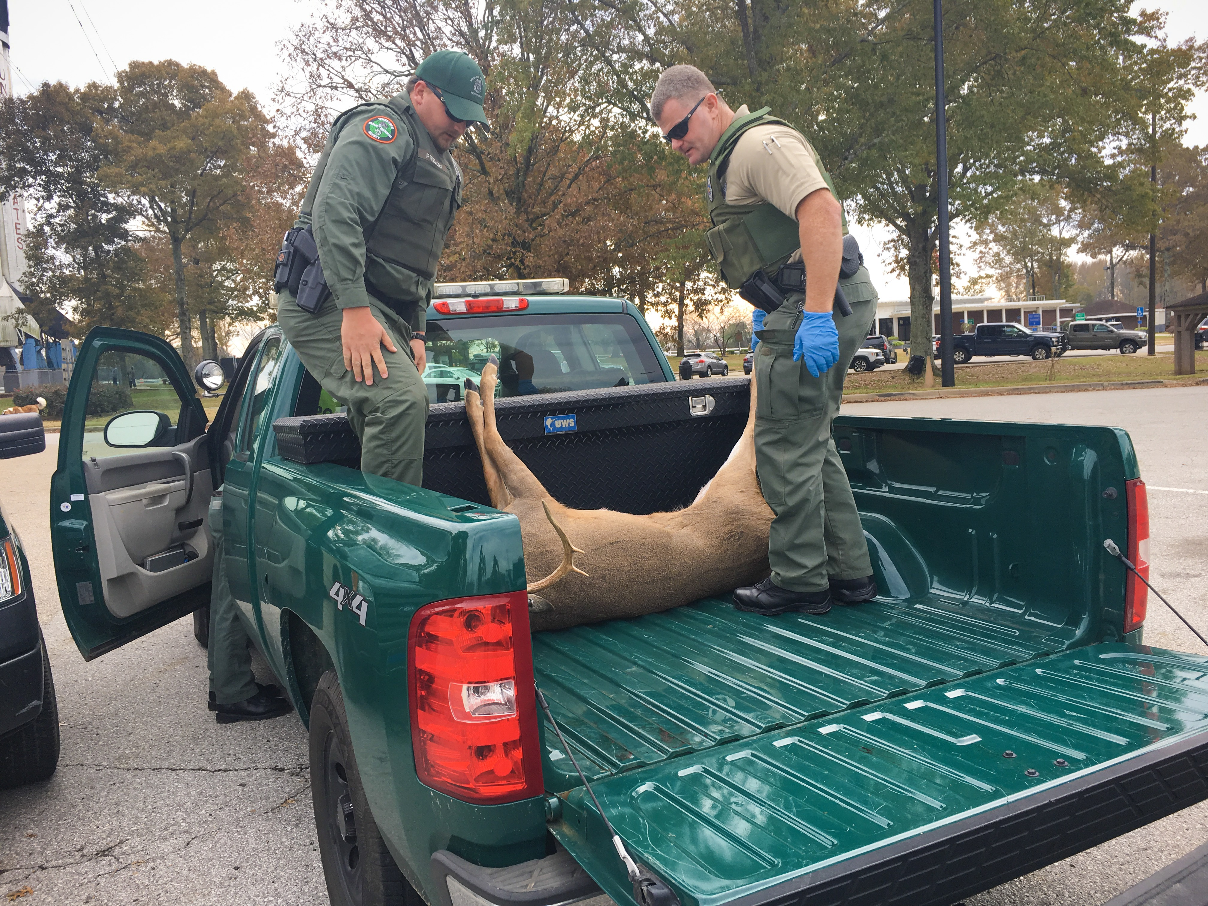 Conservation Enforcement Officers from Tennessee and Alabama confiscate an illegally imported out-of-state deer during the 2018-19 hunting season.