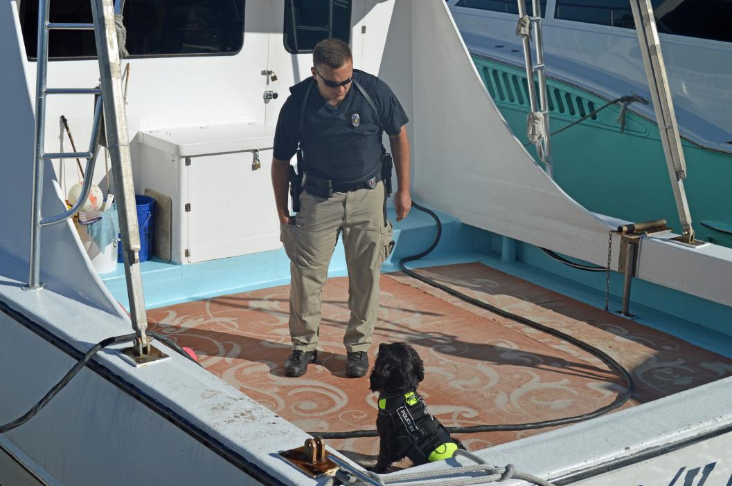 Marine Resources Enforcement Officer Chris Cox works his dog, Gaines.
