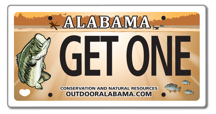 Tournaments outdoor alabama for Alabama lifetime hunting and fishing license